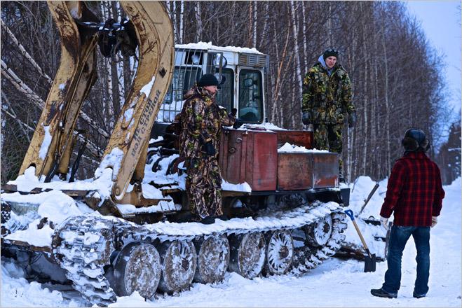Фото №1 - Сибирская резня бензопилой