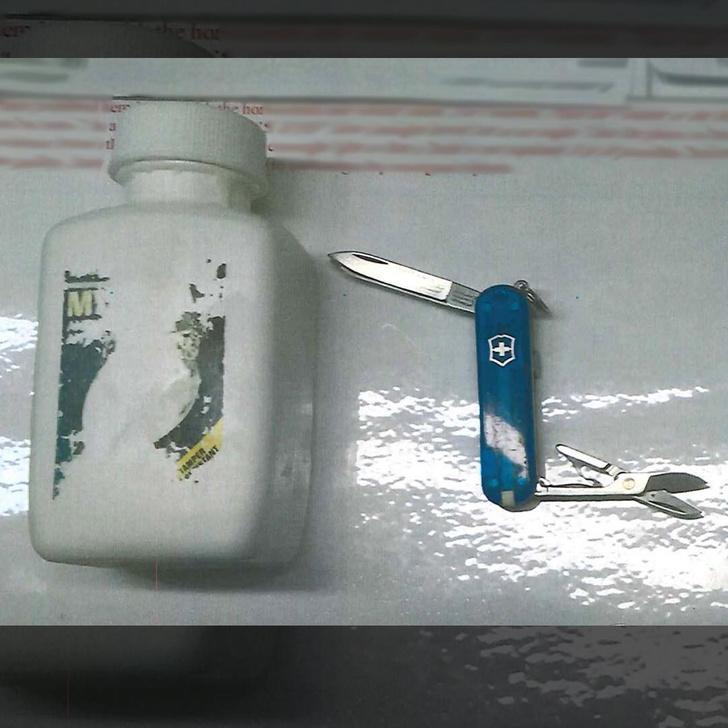 Фото №4 - Самые странные вещи, конфискованные у путешественников в США (фотоподборка)