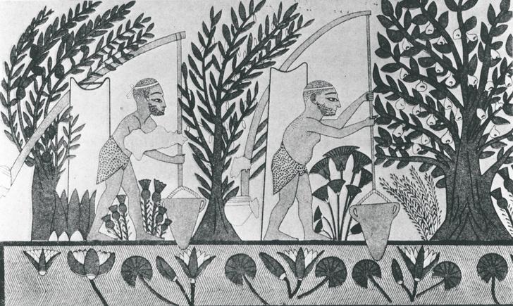 Раб, добывающий воду.  Египетская фреска