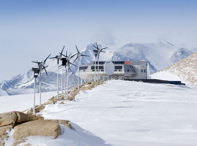 Фото №1 - 25 фактов об Антарктике