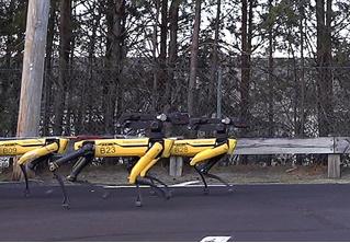 Упряжка ритмично марширующих робособак тянет грузовик (видео)