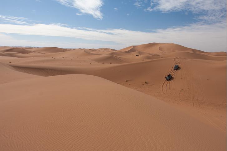 Фото №25 - Renault Duster: до Сахары подбросишь?