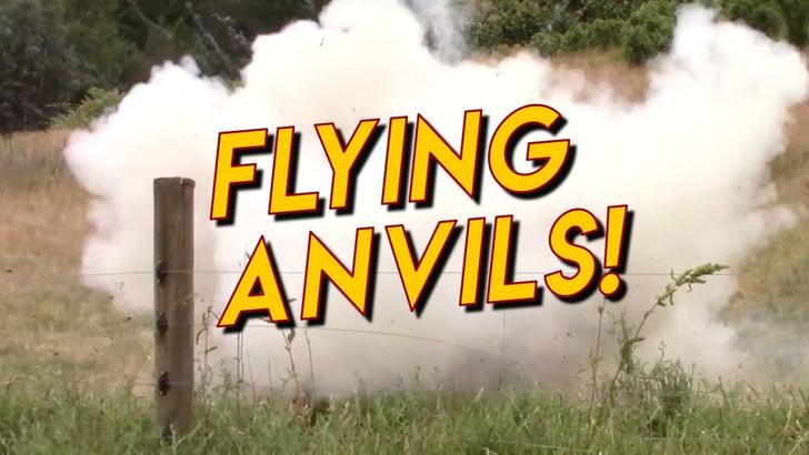 Фото №1 - Попытка сбить дрон 20-килограммовой наковальней (ВИДЕО)