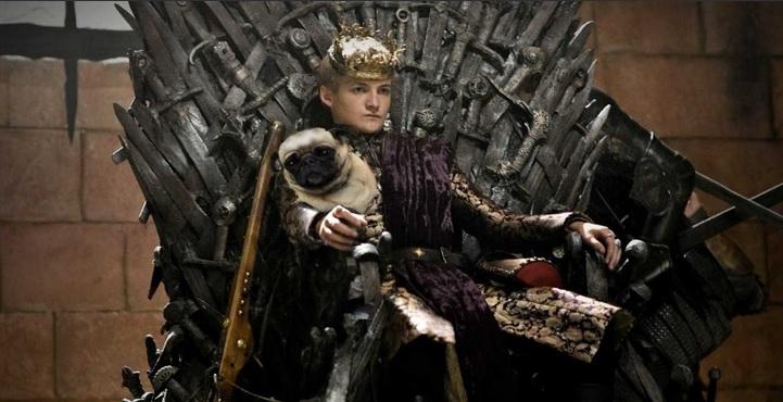 Фото №6 - Самые смешные фотожабы на короля Джоффри с мопсом