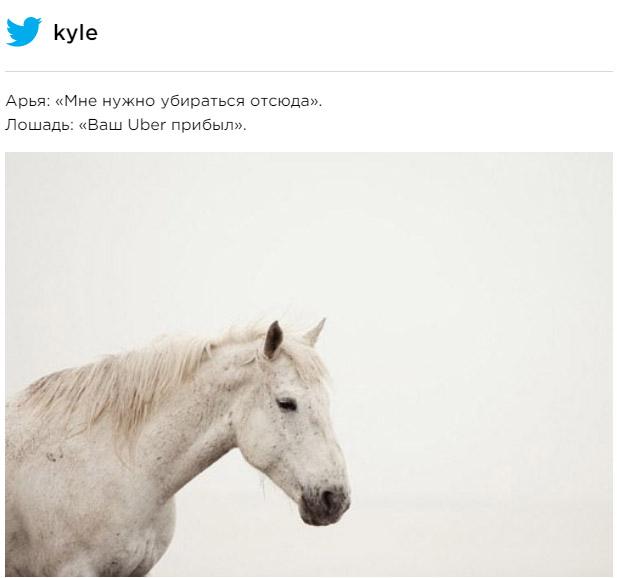 Фото №4 - Вот что значит белая лошадь, которую встретила Арья в финале пятой серии «Игры престолов»