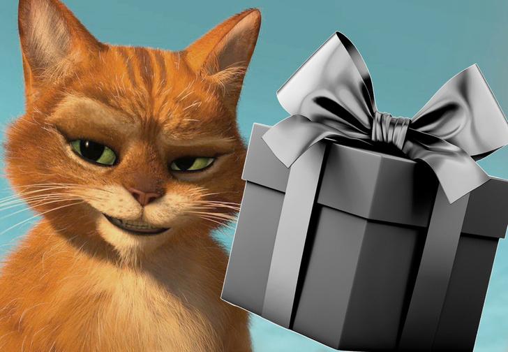 Фото №1 - Кот сгрыз наушники и принес за них хозяину необычный и пугающий подарок