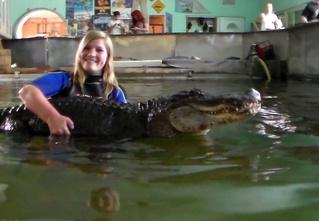 Немецкие власти нарушают права детей: им запретили плавать с крокодилами!