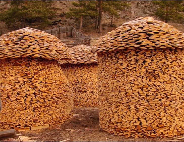 Фото №3 - Как играть в тетрис дровами