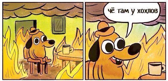 Главные мемы 2015 года
