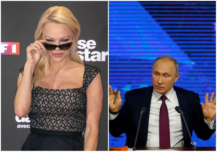 Фото №1 - Памела Андерсон попросила Путина позаботиться о косатках и белухах
