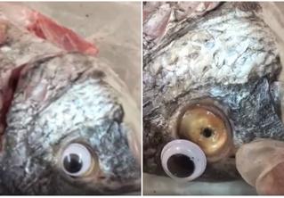 Магазин выдавал лежалую рыбу за свежую, приклеивая ей пластиковые глаза