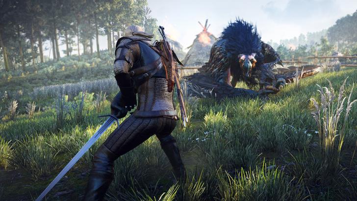 Фото №20 - 20 фактов о грядущей игре The Witcher 3: Wild Hunt