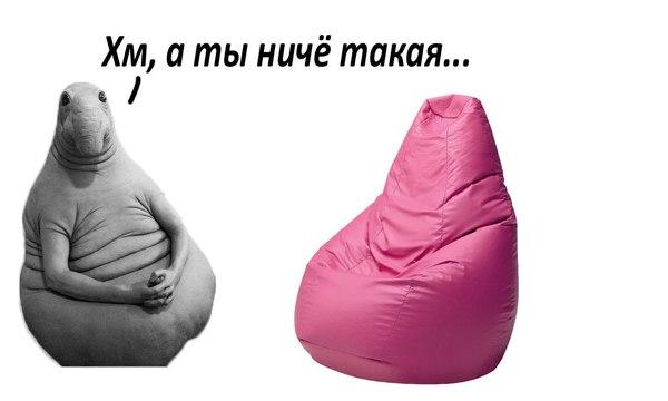 Фото №25 - Все лучшие фотожабы со Ждуном в одной подборке!