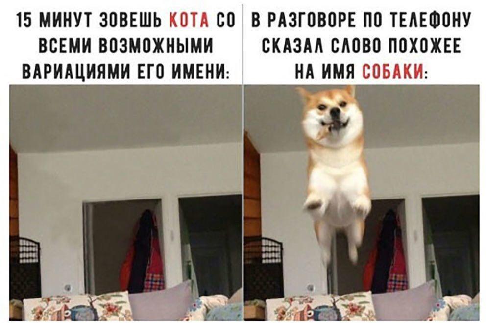 Пару забавных картинок для Вас :-) хулиганство