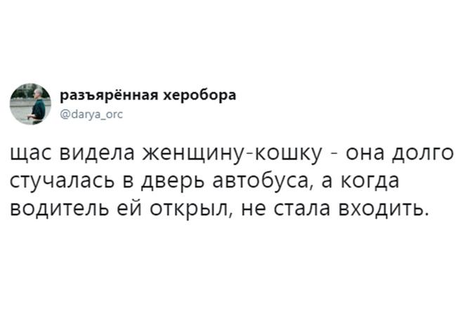 Лучшие шутки дня и совхоз имени Ленина!