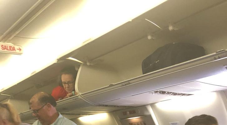 Фото №1 - Стюардесса озадачила пассажиров, забравшись на багажную полку (видео)