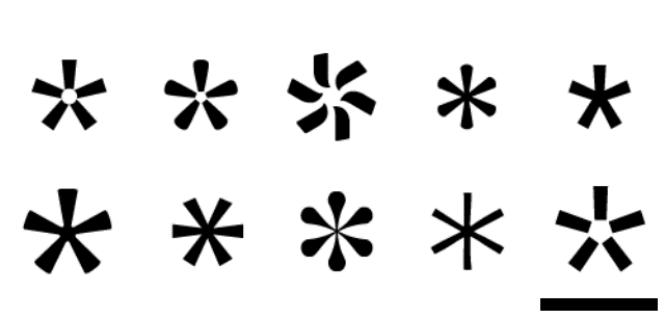 6 интригующих историй о возникновении популярных знаков и символов