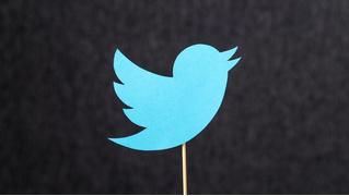Похоже, Twitter все же разрешит редактировать твиты