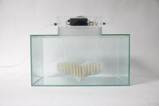 Маска, которая позволит тебе дышать под водой (ВИДЕО)