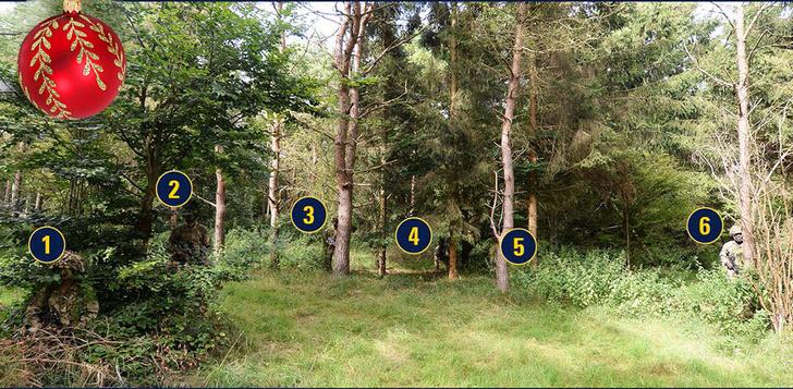 Фото №3 - Найди 6 солдат, притаившихся в густом лесу!