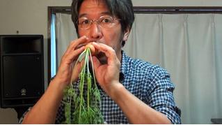 Японец делает музыкальные инструменты из овощей (ВИДЕО)