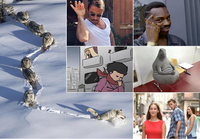 мемы 2017 ждун шерстяной волчара биткоин