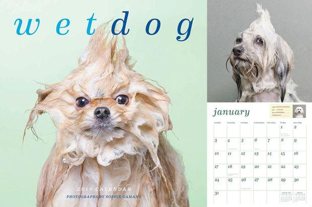 Фото №3 - 9 самых безумных календарей на 2016-й год!