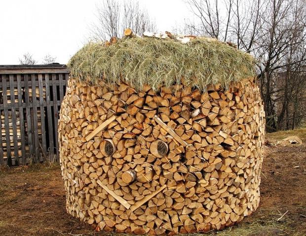 Фото №17 - Как играть в тетрис дровами