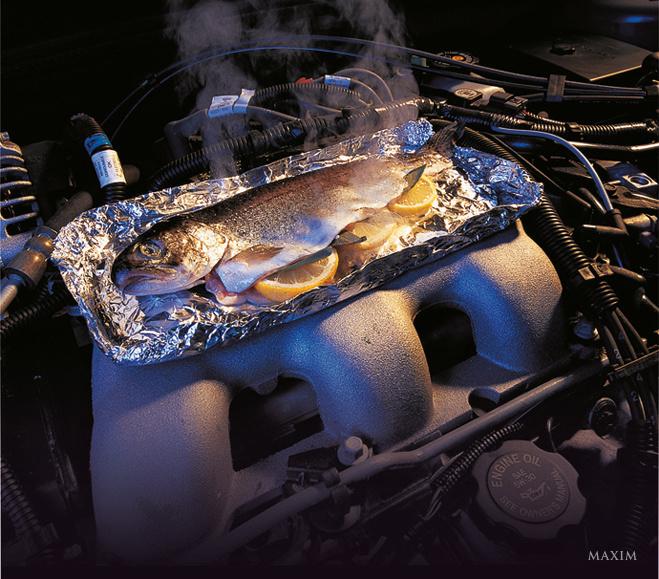 Как пожарить рыбу на двигателе автомобиля