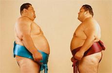 Вдруг два борца сумо встретятся в лифте?