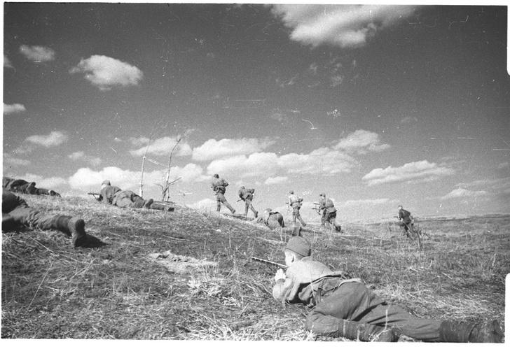 Фото №4 - Синявинские высоты: как саперная лопатка стала любимым оружием советской пехоты