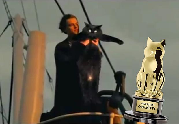 Фото №1 - Монтажер вставляет свою кошку в самые популярные фильмы, и получается очень смешно (видео)