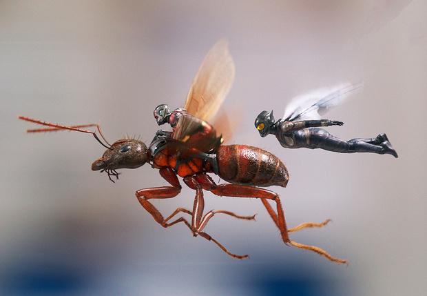 Фото №1 - «Человек-муравей и Оса», «Небоскреб» и другие главные фильмы июля