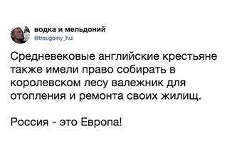 Лучшие шутки о законе, позволяющем россиянам БЕСПЛАТНО собирать валежник
