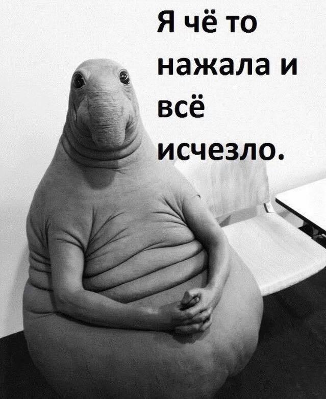 Фото №11 - Все лучшие фотожабы со Ждуном в одной подборке!