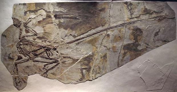 Фото №1 - Четыре археологические фальсификации