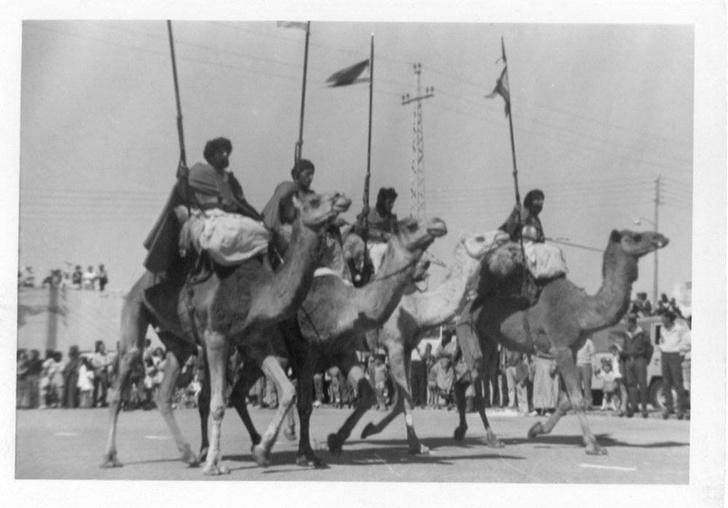 Марокканская кавалерия