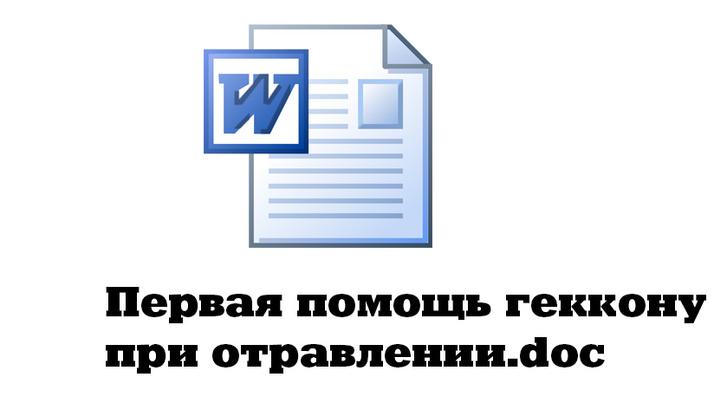 Фото №5 - Что творится на компьютере Федора Конюхова