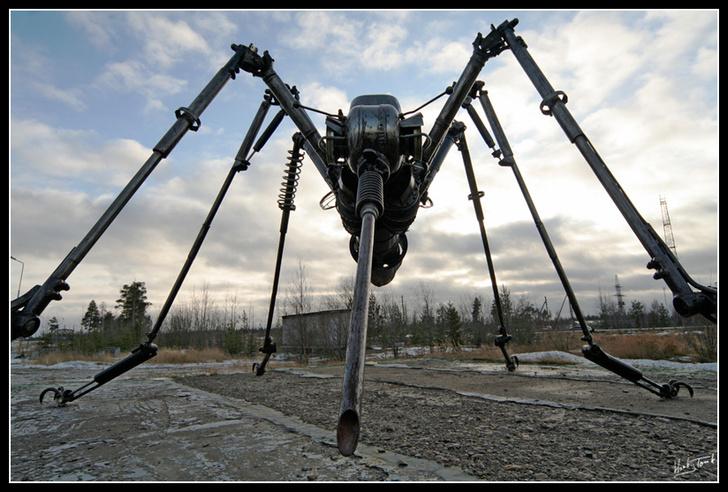 Фото №4 - Вооот такие комары