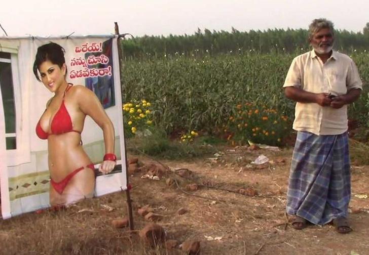Фото №1 - Индийский фермер расставил на поле плакаты с порнозвездой, чтобы защитить урожай