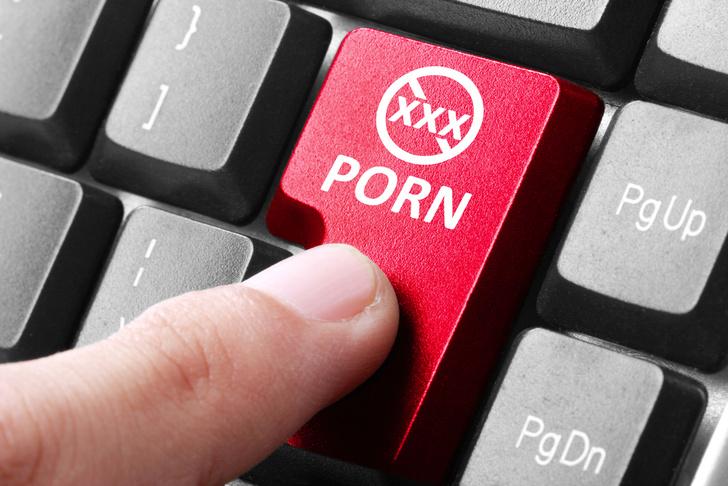 Фото №1 - Отважные исследователи выяснили, какое порно возбуждает быстрее всего!