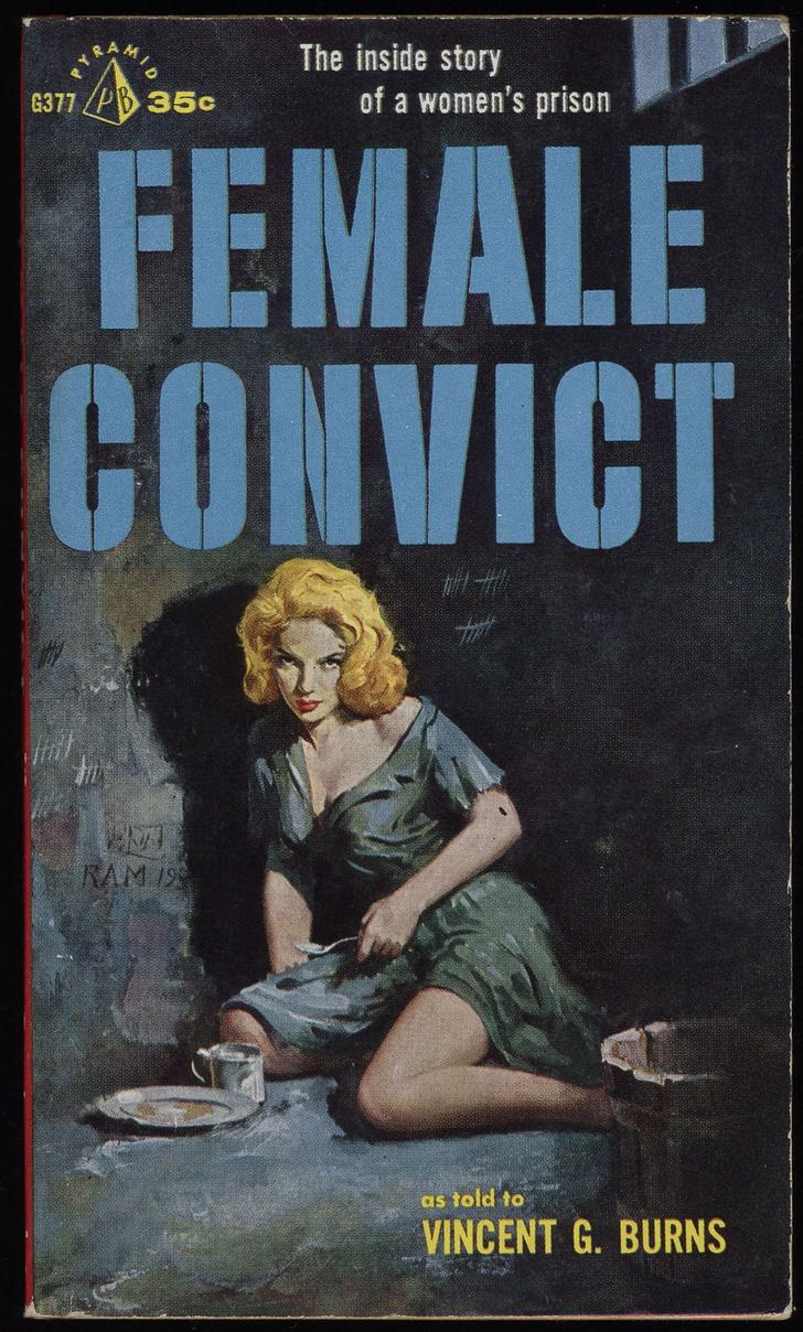 Фото №8 - Обложки старых эротических книг про лесбиянок!