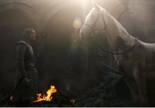 Вот что значит белая лошадь, которую встретила Арья в финале пятой серии «Игры престолов»