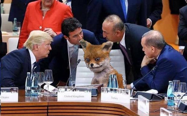 Фото №8 - Масштаб личности: лучшие шутки о прифотошопленном Путине на саммите G20