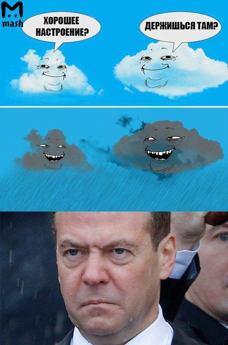 Фото №6 - Избранные шутки о грустном Медведеве под дождем