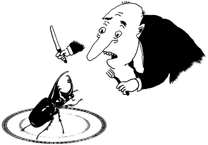 Если хочется съесть жука