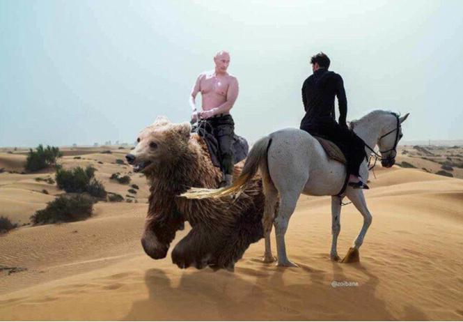 Павел Дуров на коне: лучшие фотожабы!