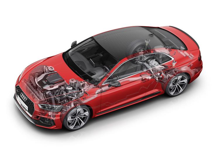 Фото №7 - Отвечаем на главные вопросы об Audi RS 5 Coupe