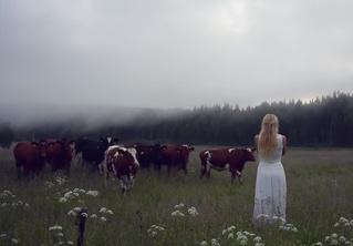 Послушай, как женщины викингов звали скот домой тысячу лет назад