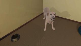 Виртуальный симулятор надрессирует человека, чтобы тот надрессировал собаку (видео)